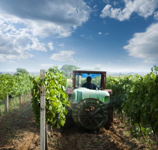 Traktor Obstbauer Pestizide Spritzmittel