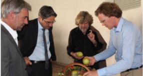 Der Messner-Apfel