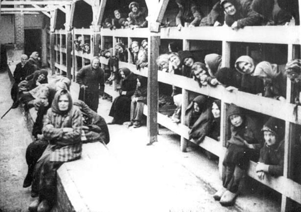 28_Auschwitz52