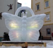 Der Eis-Schmetterling