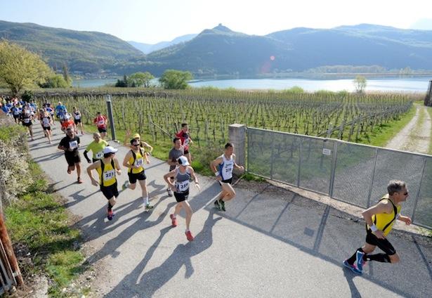 Der Kalterer Halbmarathon (Foto: Franz Spiess)