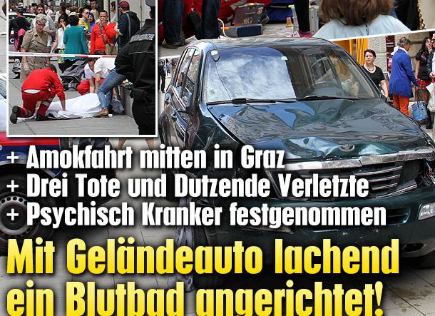 """Die Online-Ausgabe der """"Krone"""""""