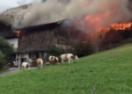Das Brand-Video