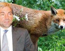 Fuchsjagd gestoppt