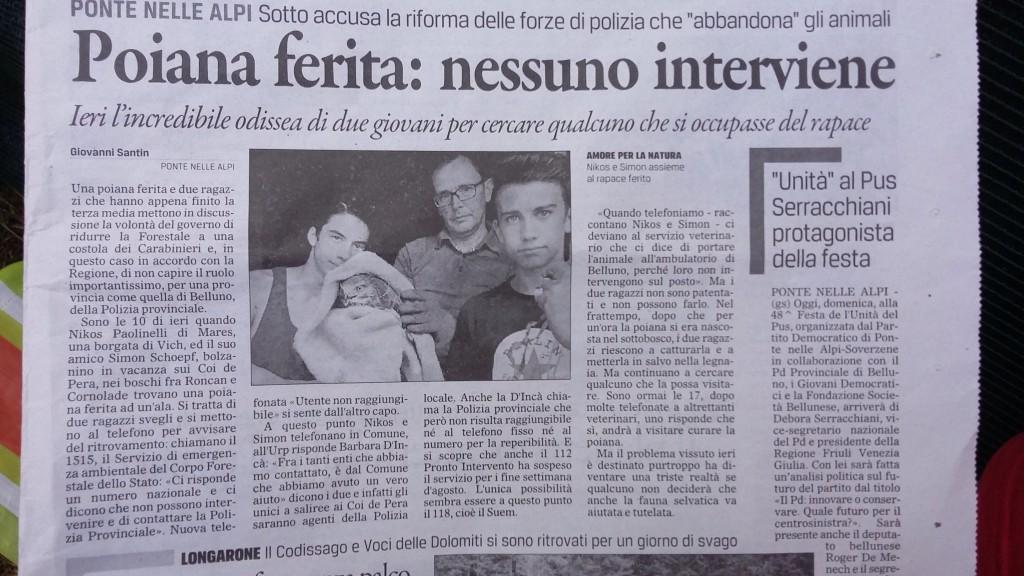 Ein Artikel im Gazzettino di Belluno