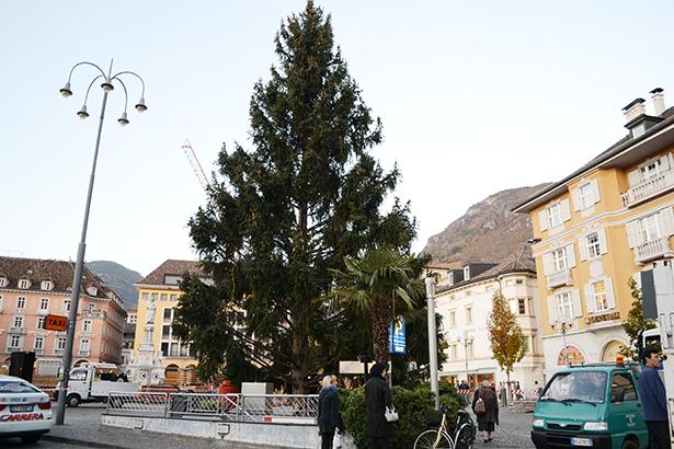 Weihnachtsbaum Bozen