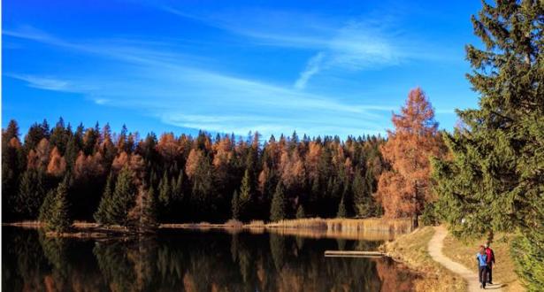 Herbststimmung (Foto: Cecilia Meggios)