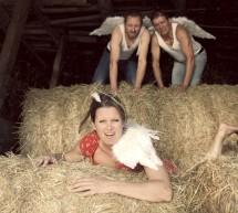 Die Ochsen und die Esel