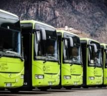 Patentino im Bus