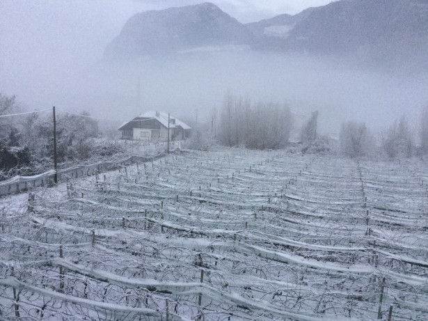 Schnee in Bozen