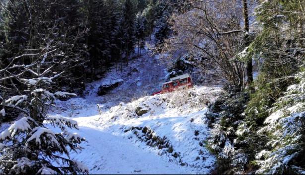 Die Suchaktion (Fotos: FF Dorf Tirol)