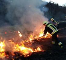 Waldbrand auf Sigmundskron