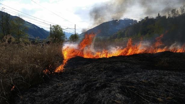 Der Einsatz der Feuerwehren (Fotos: FF Trens)