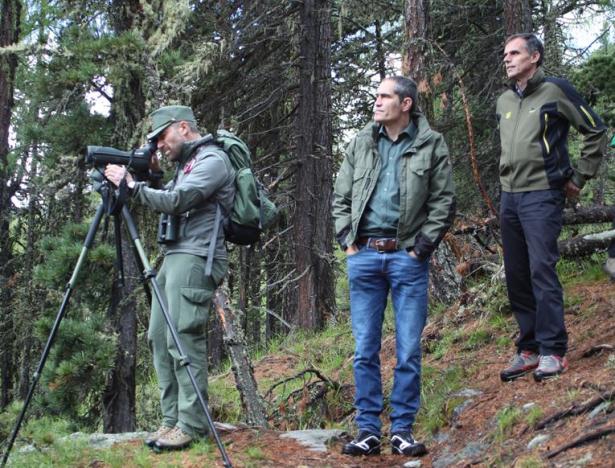LR Theiner und Amtsdirektor Hanspeter Gunsch mit Förster beim Beobachten des Bartgeier-Horstes (Foto: Andrea Buffa)