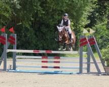 Die Pony-Meisterschaften