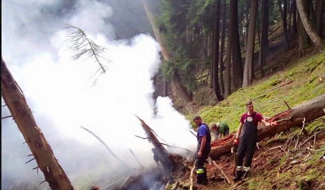 Der Brand am Latscher Berg (Fotos: FF Latsch)