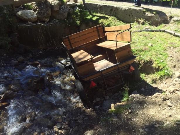 Die Unfall-Kutsche (Fotos: FF Seis)
