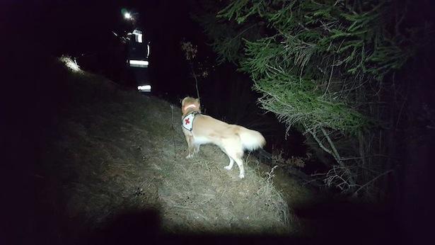 Die Suchaktion (Foto: Rettungshundestaffel Bezirk Bozen)