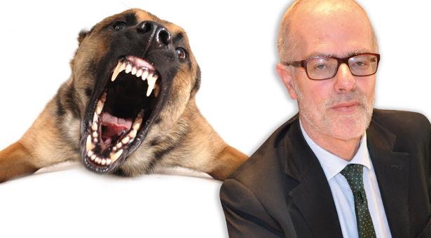 Hans heiss Hund bissig