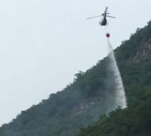 Waldbrand bei Laag