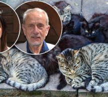 Protest der Tierschützer