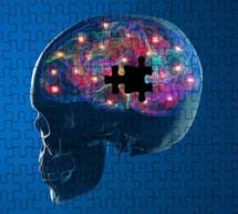 Das Parkinson-Dossier