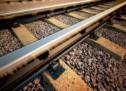 37-Jähriger von Zug überrollt