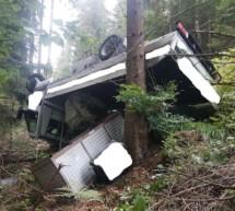 Lieferwagen im Wald