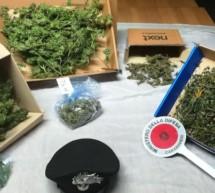 Marihuana in Neumarkt