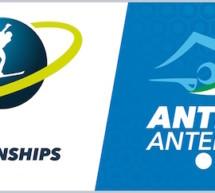 Das WM-Logo