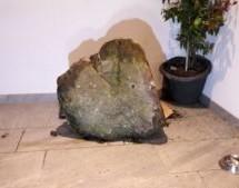 Stein stürzt in Wohnhaus