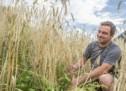 255 Tonnen Getreide