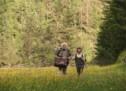 Filmland Südtirol