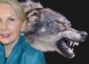 """""""Wollen den Wolf ja nicht ausrotten"""""""