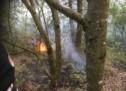 Waldbrand in Rabland