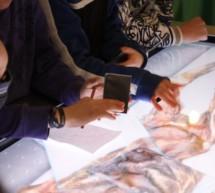 Verkalkter Ötzi