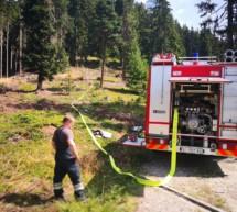 Waldbrand in Pfalzen
