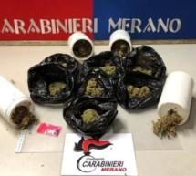 Marihuana & ein Einbrecher