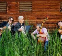 Aluna Quartet