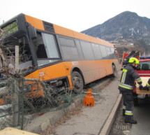 Bus rast in Obstwiese