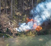 Waldbrand nahe Wohnhäusern