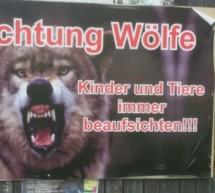 Die Wolf-Hysterie