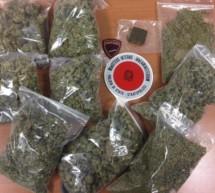 1,5 Kilo Drogen beschlagnahmt