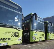 Der Bus-Ausschuss