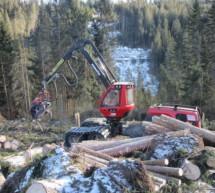 Hilfe für Waldeigentümer