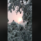 Baum stürzt auf Hochspannungsleitung