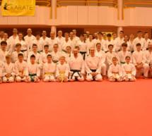 Karate-Stage in Mühlbach