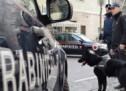 Einbrecherin verhaftet