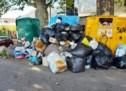 Gefasste Müllsünder