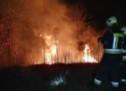 Waldbrand unter Kontrolle